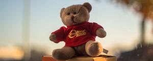 Das Bild zeigt einen Stoffteddybär mit einem roten Pullover und dem Schriftzug confern Umzugspartner